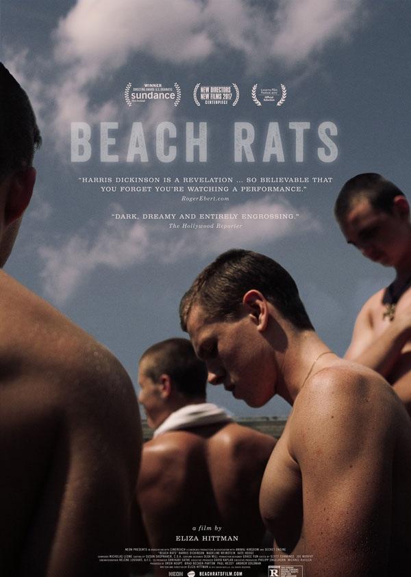 2017最新电影《沙滩鼠》同性类题材电影