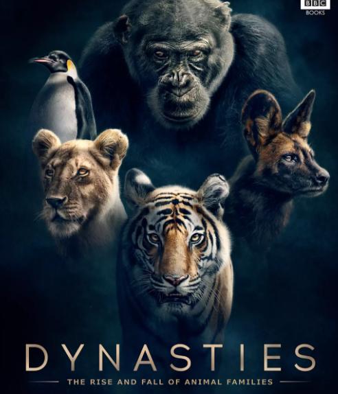 2018记录片《动物王朝第一季》1-4集