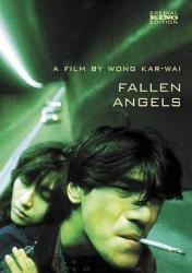 1995王家卫8.3分剧情《堕落天使》BD1080p.国粤双语中字