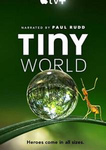 2020纪录片《小小世界.第二季》1080p.HD中英双字