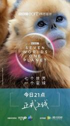 2019英国9.8分纪录片《七个世界,一个星球》HD1080p.中英双字