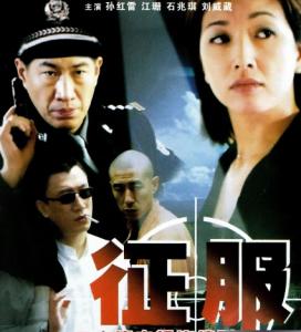 2003孙红雷经典警匪剧《征服》全20集