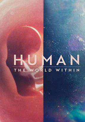 2021美国纪录片〖人类:体内的