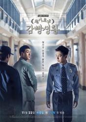2017韩国9.4分电视剧《机智牢房生活》全16集