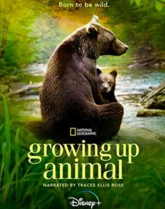 2021纪录片《动物成长》1080p.HD中字